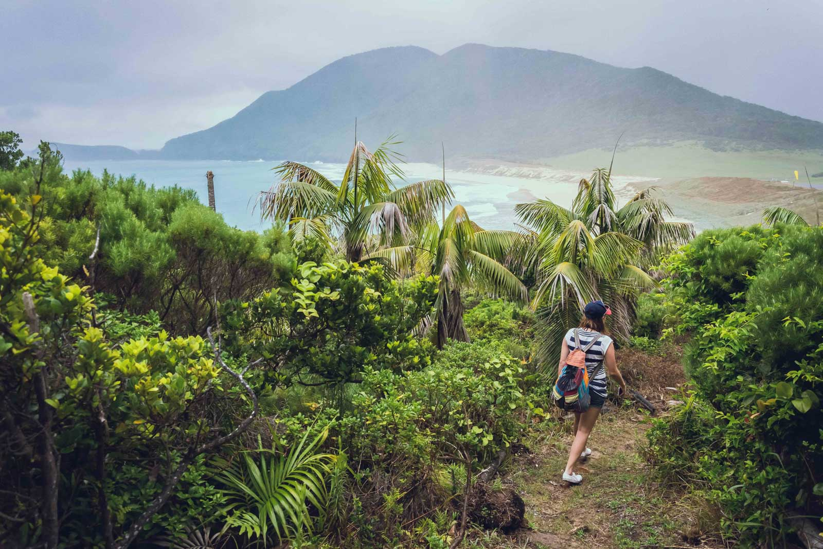 5 Hours in Paradise | Lord Howe Island