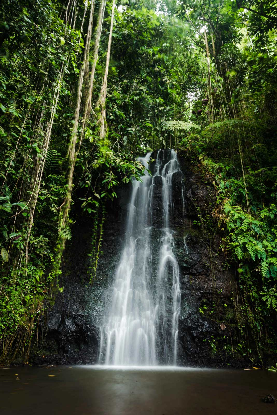 Tahiti's Best Nature Spots