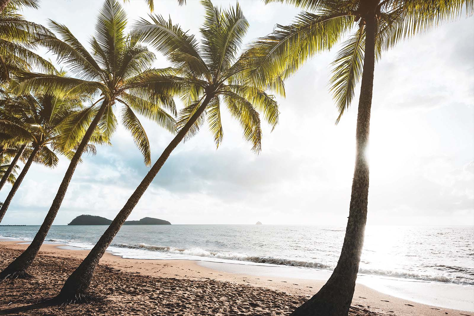 North Queensland - Palm Cove